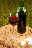 Comida campestre del vino en hierba imagen de archivo