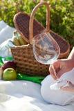 Comida campestre en día de verano asoleado imagen de archivo libre de regalías