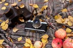 Comida campestre en el bosque del otoño foto de archivo