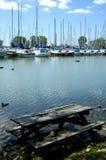 Comida campestre en el lago foto de archivo