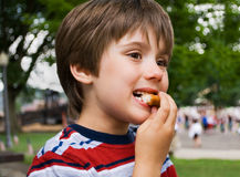 Comida campestre en el parque Imagen de archivo libre de regalías