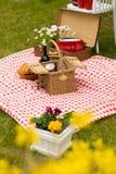 Comida campestre en el parque de la primavera Imagen de archivo libre de regalías