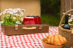 Comida campestre en el parque de la primavera Imagen de archivo