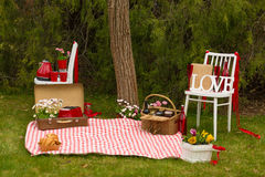 Comida campestre en el parque de la primavera Fotografía de archivo