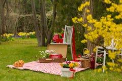 Comida campestre en el parque de la primavera Fotos de archivo