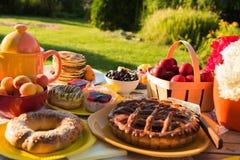 Comida campestre en el patio trasero en un día soleado Imagen de archivo