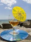 Comida campestre en la costa Fotografía de archivo libre de regalías