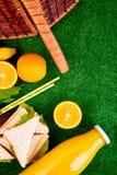 Comida campestre en la hierba fotografía de archivo