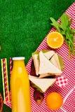 Comida campestre en la hierba imagen de archivo libre de regalías
