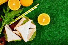 Comida campestre en la hierba imagen de archivo