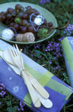 Comida campestre en la hierba Fotografía de archivo libre de regalías
