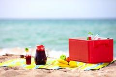 Comida campestre en la playa Fotos de archivo libres de regalías