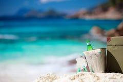 Comida campestre en la playa tropical Fotografía de archivo