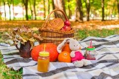 Comida campestre en naturaleza cesta de mimbre en una tela escocesa de la tela escocesa alrededor del follaje, de las bebidas, de imagen de archivo