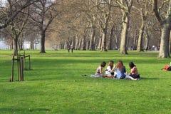 Comida campestre en parque verde Fotografía de archivo