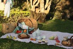 Comida campestre en un jardín Fotografía de archivo libre de regalías