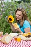 Comida campestre en un prado de la flor Fotografía de archivo libre de regalías