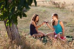 Comida campestre feliz Imagen de archivo libre de regalías