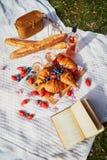 Comida campestre hermosa con el vino rosado, los cruasanes franceses y las bayas frescas fotografía de archivo