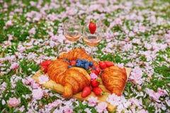 Comida campestre hermosa con el vino rosado, los cruasanes franceses y las bayas frescas foto de archivo