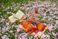 Comida campestre hermosa con el vino rosado, los cruasanes franceses y las bayas frescas imágenes de archivo libres de regalías