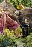 Comida campestre ligera en el otoño Imagenes de archivo