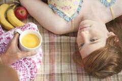 Comida campestre por encima upside-down Imagen de archivo libre de regalías