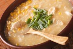 Comida china: sopa del maíz con el primer del pollo y de las cebollas horizo Imagen de archivo libre de regalías