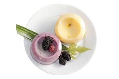 Comida congelada Imagen de archivo libre de regalías