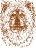 Comida de comida do cão ilustração stock