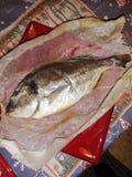 Comida de Italia de los pescados foto de archivo libre de regalías