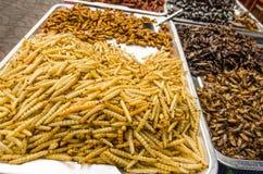 Comida de la calle de Fried Insect Imagen de archivo