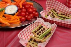 Comida de la comida campestre como el apio, las zanahorias, y los tomatoess foto de archivo libre de regalías