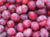 comida de la fruta de la pasa Imagenes de archivo