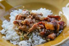Comida de la mañana del arroz y del curry en la gente de Tailandia Foto de archivo libre de regalías