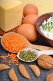 Comida de la proteína: huevos, almendras, lentejas, queso, nuez, y cuajada Foto de archivo libre de regalías