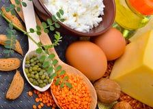 Comida de la proteína: huevos, almendras, lentejas, queso, nuez, y cuajada Fotografía de archivo