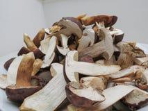 Comida de la seta de la seta de Porcini Foto de archivo libre de regalías