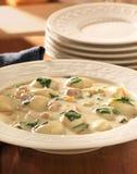 Comida de la sopa del pollo y del gnocchi Fotografía de archivo