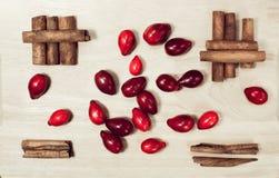 Comida de la vida de las bayas del cornejo rojo y todavía de los palillos de canela en minim Fotografía de archivo