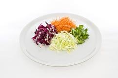 Comida de las ensaladas en la placa blanca Foto de archivo libre de regalías