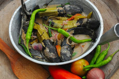 Comida de las Filipinas, Ginataang Bunog (Fried Young Mudfish) Foto de archivo