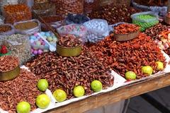 Comida de los insectos en México imagen de archivo libre de regalías
