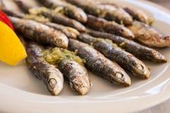 Comida de pescados Imagen de archivo