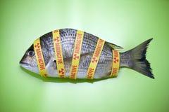Comida de pescados radiactiva del océano Fotografía de archivo libre de regalías