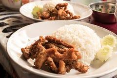 Comida del arroz frito del cerdo en Tailandia Fotos de archivo libres de regalías