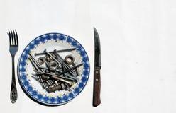 Comida del hierro Imágenes de archivo libres de regalías