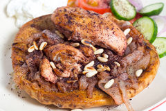 Comida del pollo del sumac de Musakhan Imágenes de archivo libres de regalías