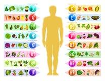 Comida del vegano con las vitaminas Nutrición libre illustration