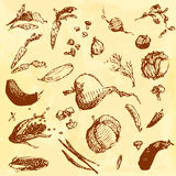 Comida dibujada mano del garabato, verduras Objetos de Brown, fondo inconsútil de la acuarela amarilla Imagen de archivo